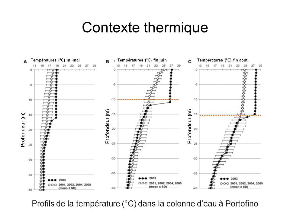 Profils de la température (°C) dans la colonne d'eau à Portofino