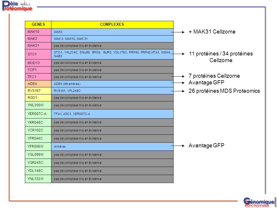 11 protéines / 34 protéines Cellzome