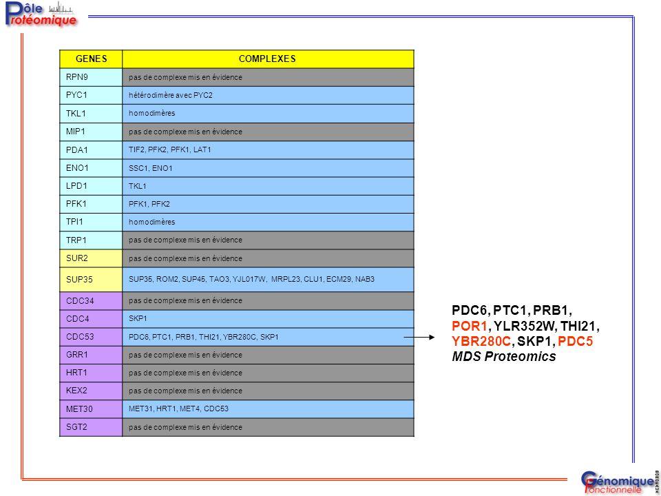 PDC6, PTC1, PRB1, POR1, YLR352W, THI21, YBR280C, SKP1, PDC5