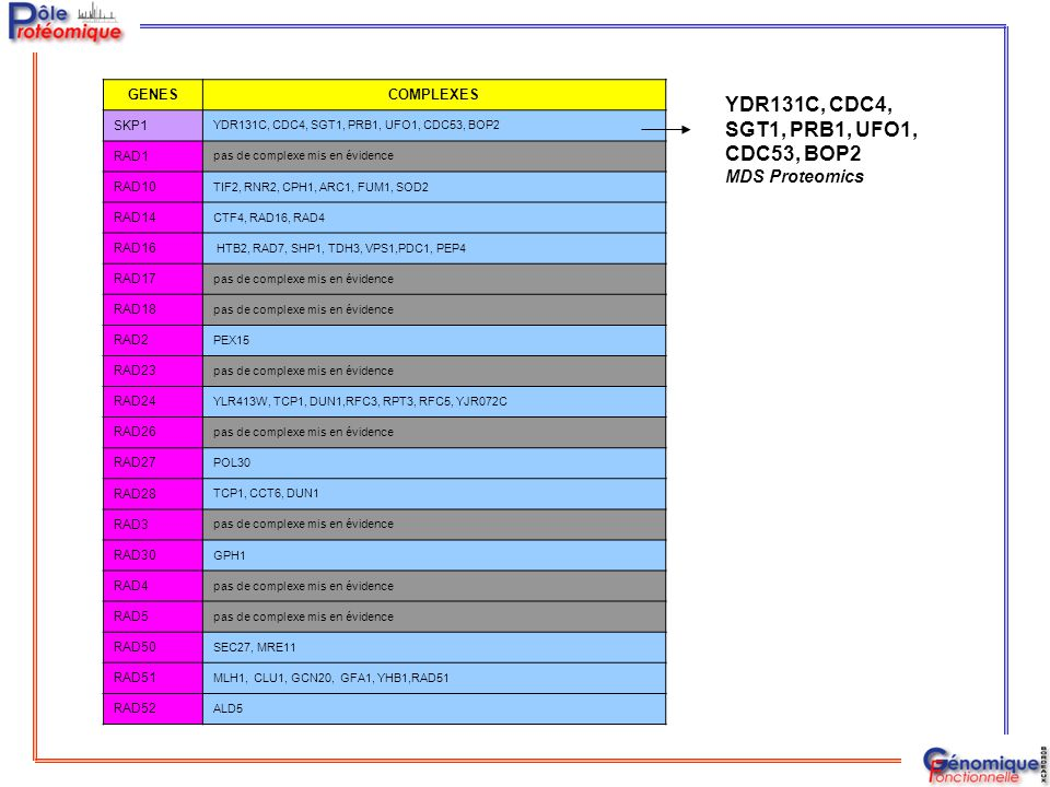 YDR131C, CDC4, SGT1, PRB1, UFO1, CDC53, BOP2