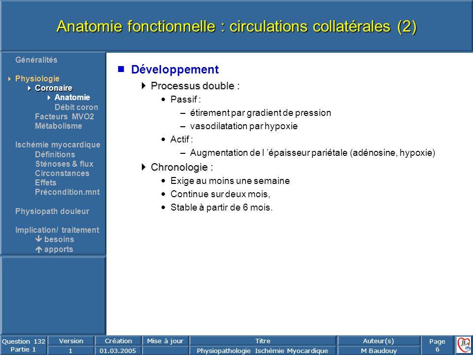 Anatomie fonctionnelle : circulations collatérales (2)