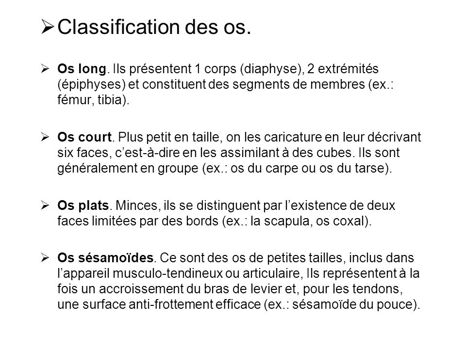Classification des os.