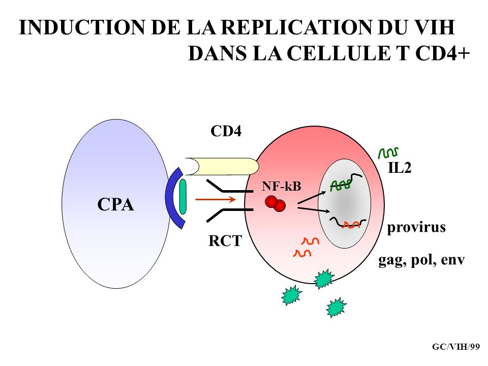 INDUCTION DE LA REPLICATION DU VIH