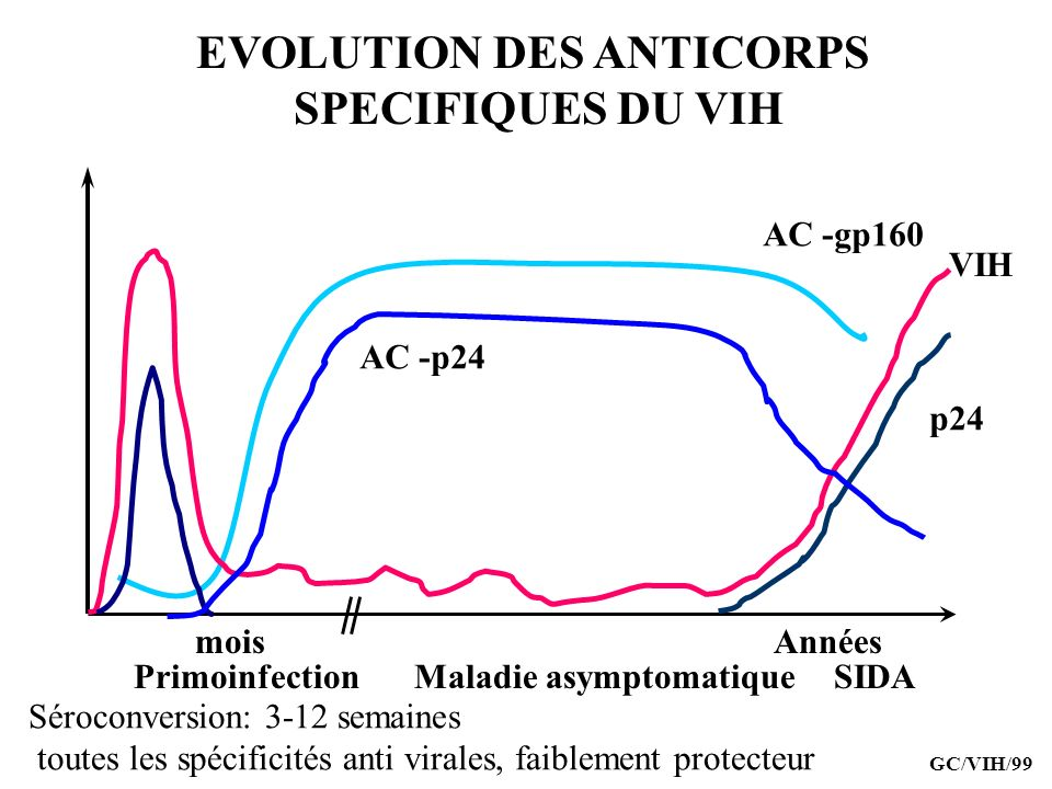 EVOLUTION DES ANTICORPS