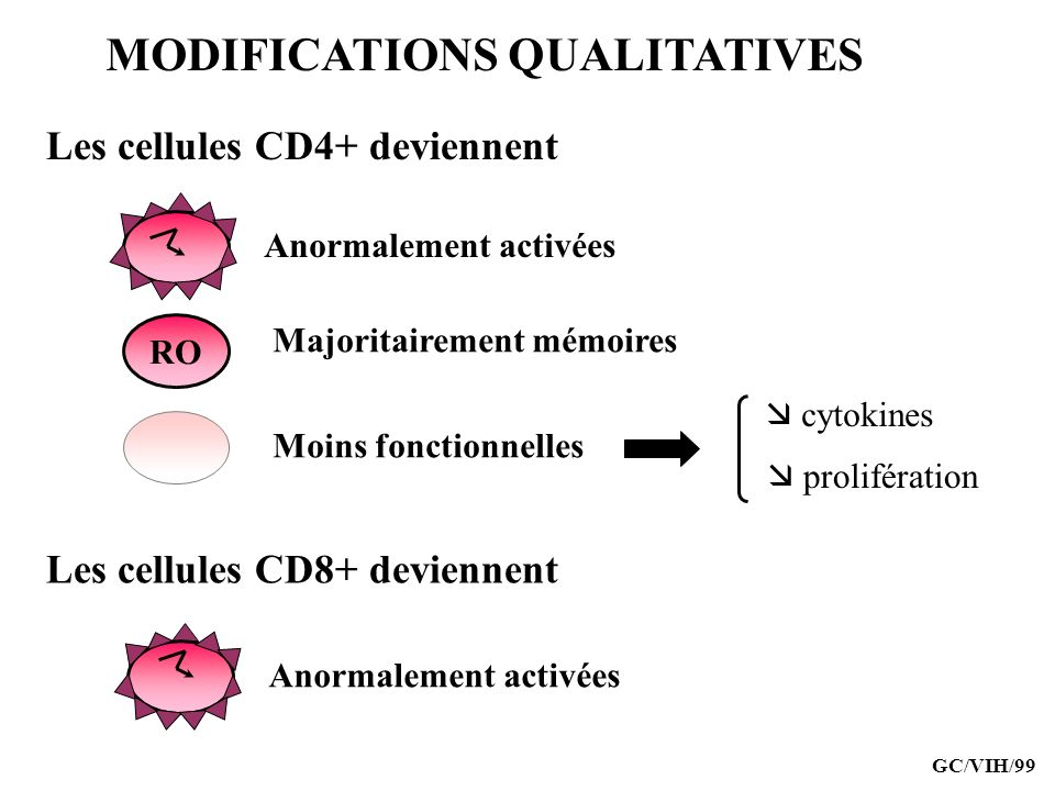 MODIFICATIONS QUALITATIVES