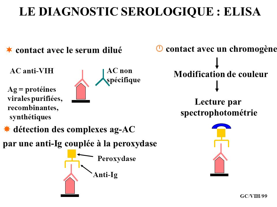 LE DIAGNOSTIC SEROLOGIQUE : ELISA