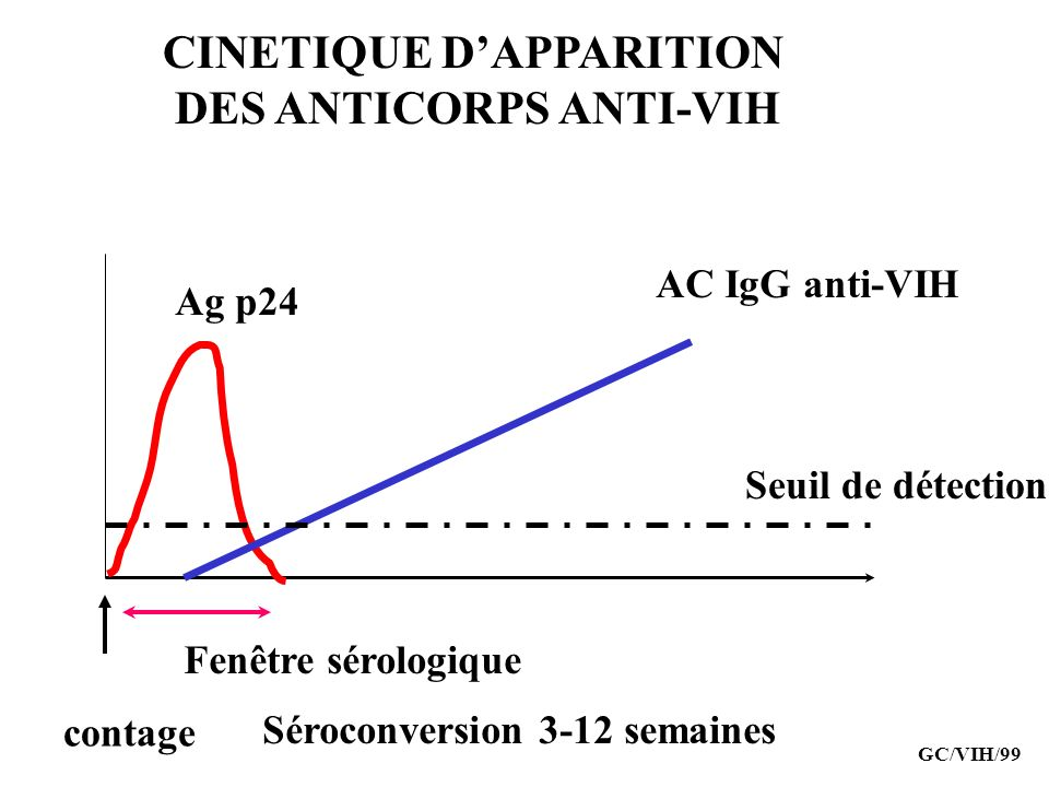 CINETIQUE D'APPARITION DES ANTICORPS ANTI-VIH