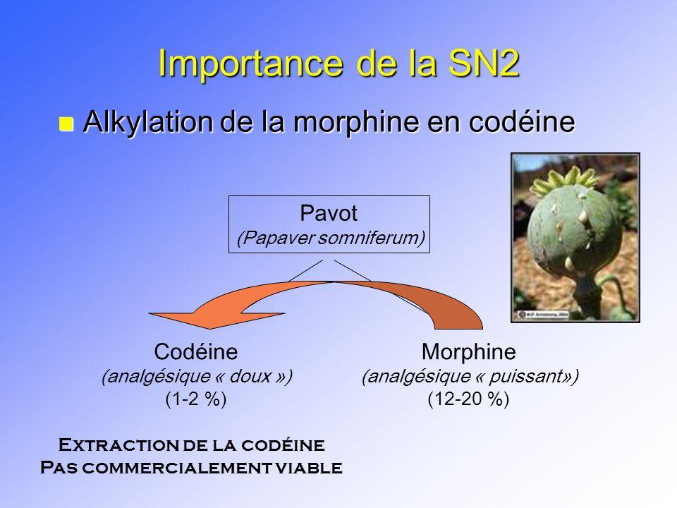 Importance de la SN2 Alkylation de la morphine en codéine Pavot