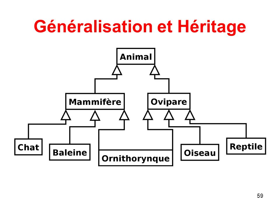 Généralisation et Héritage