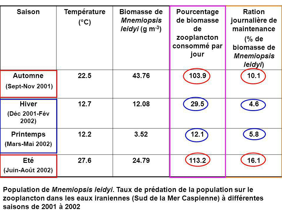 Biomasse de Mnemiopsis leidyi (g m-3)