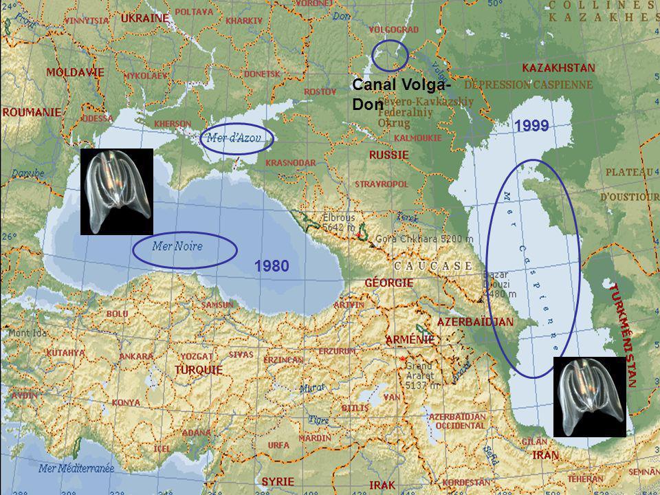 Canal Volga-Don 1999 1980