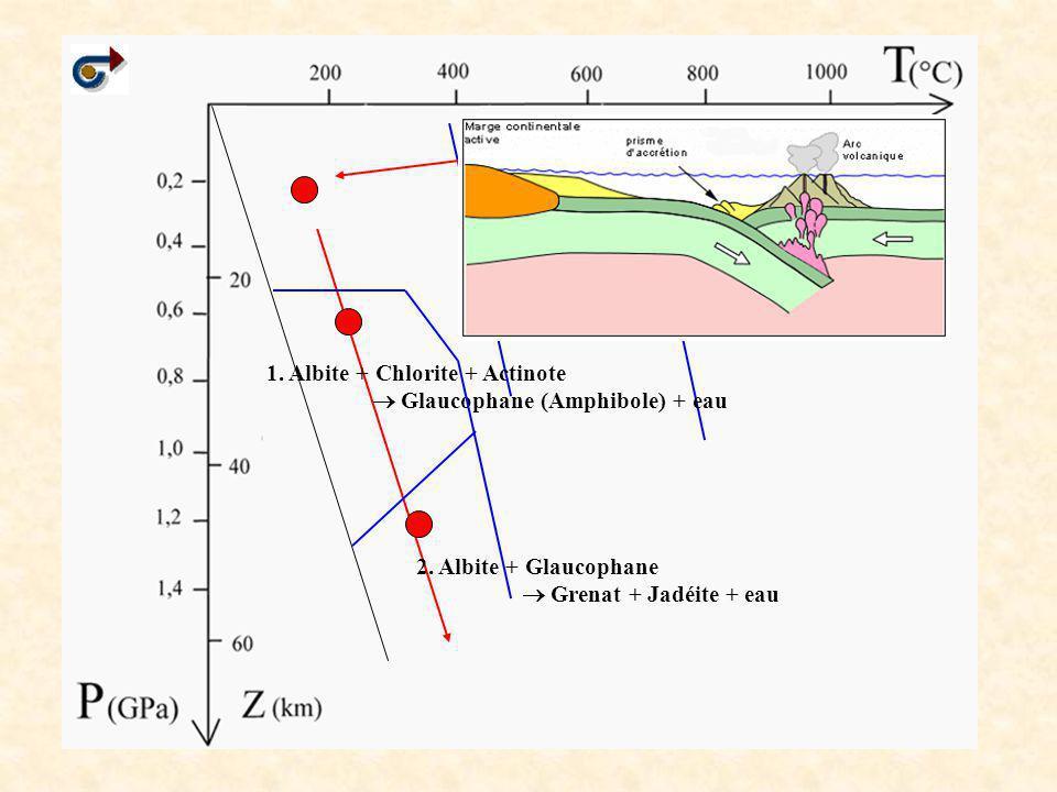 1. Albite + Chlorite + Actinote