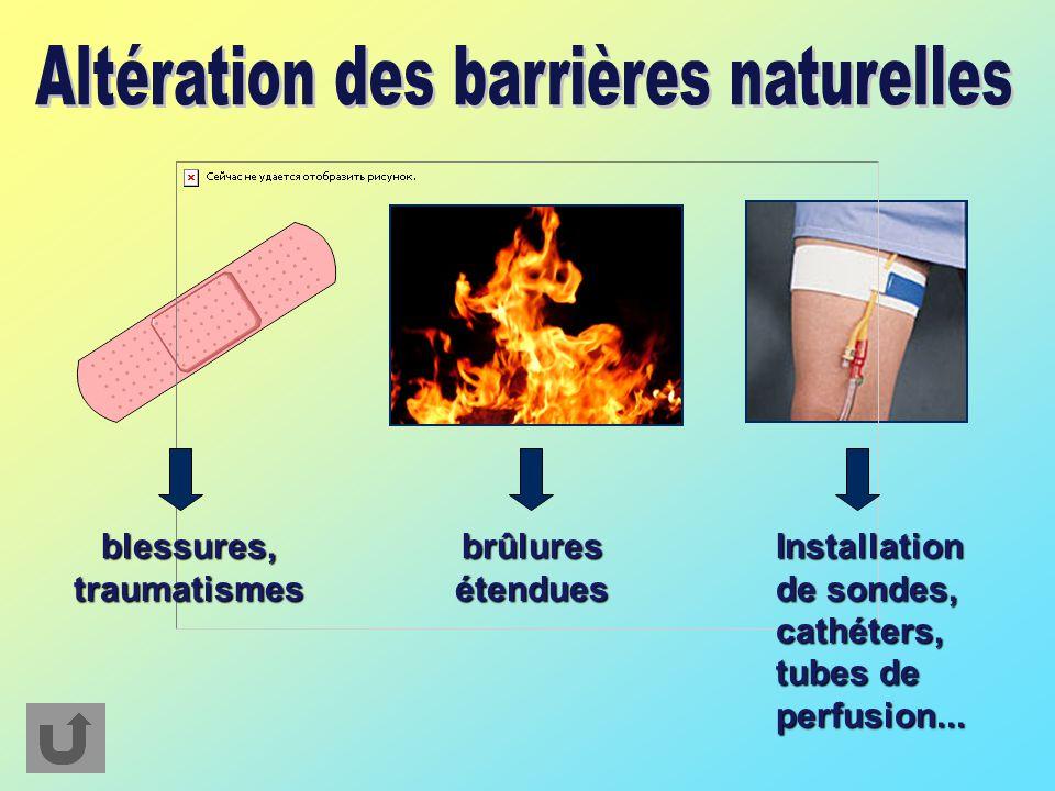 Altération des barrières naturelles
