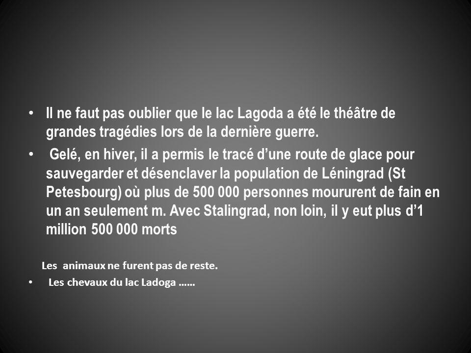 Il ne faut pas oublier que le lac Lagoda a été le théâtre de grandes tragédies lors de la dernière guerre.