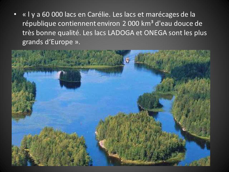 « l y a 60 000 lacs en Carélie.