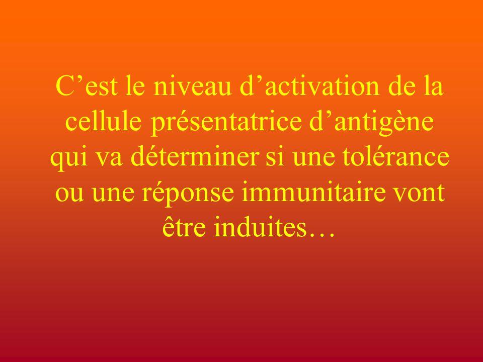 C'est le niveau d'activation de la cellule présentatrice d'antigène qui va déterminer si une tolérance ou une réponse immunitaire vont être induites…
