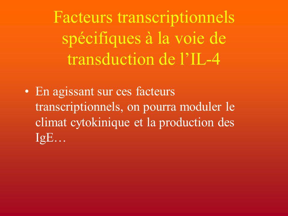 Facteurs transcriptionnels spécifiques à la voie de transduction de l'IL-4