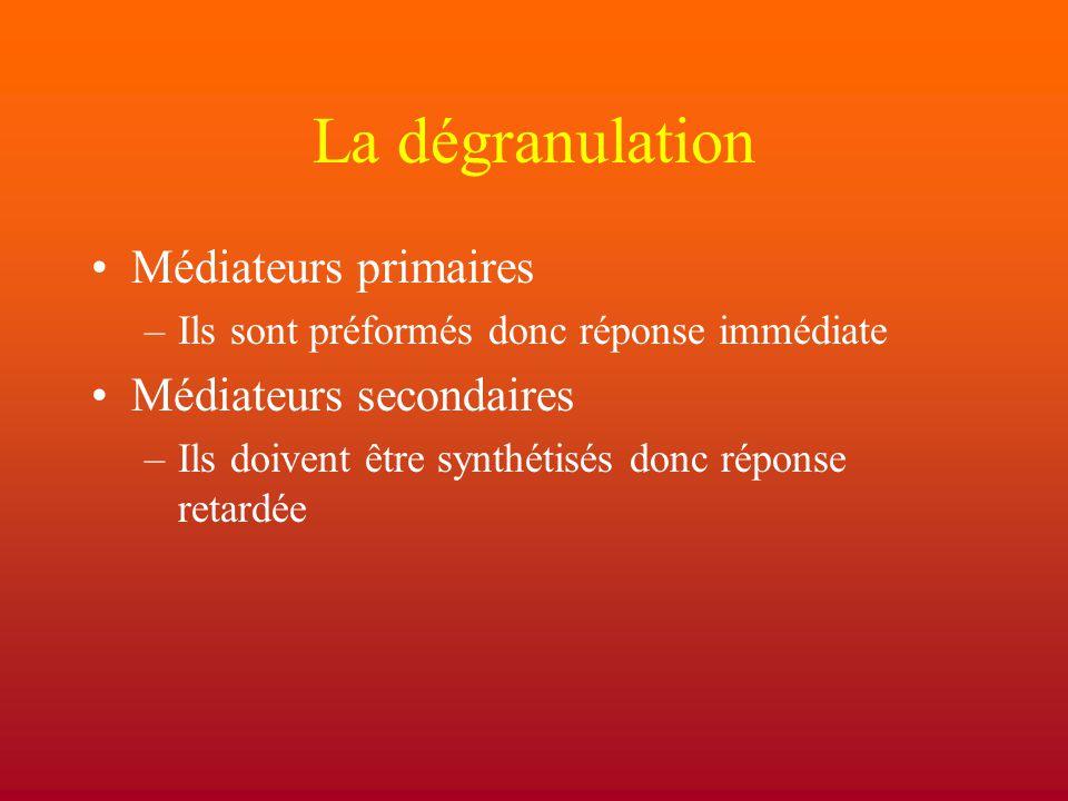 La dégranulation Médiateurs primaires Médiateurs secondaires