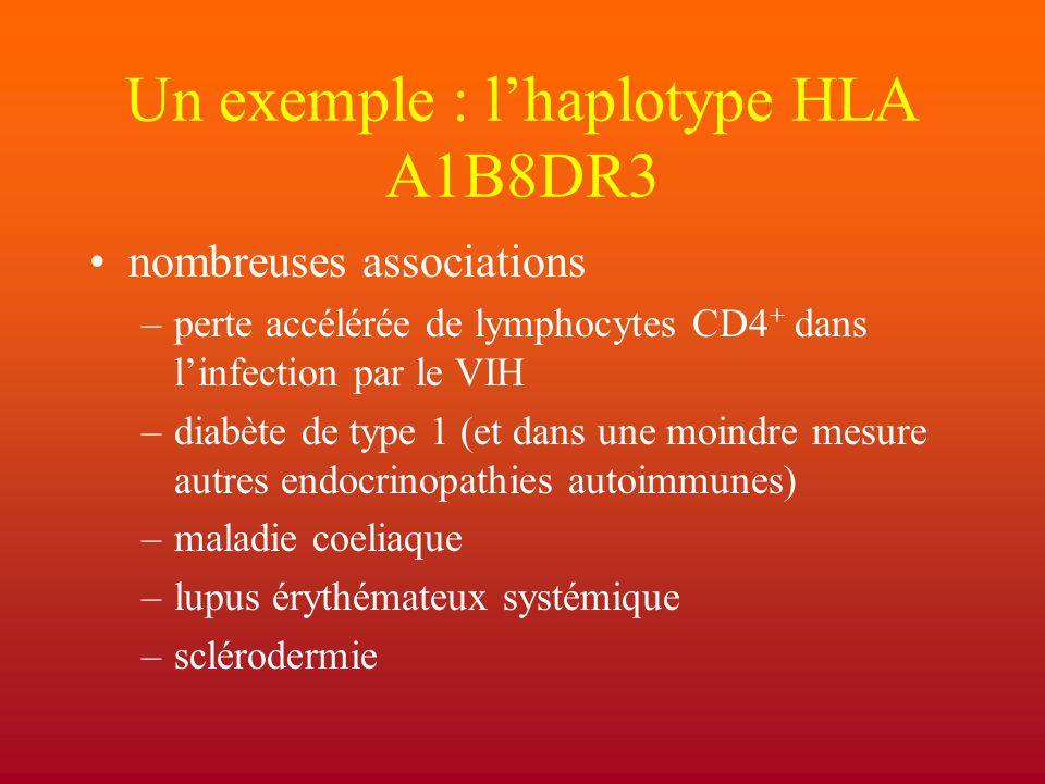 Un exemple : l'haplotype HLA A1B8DR3