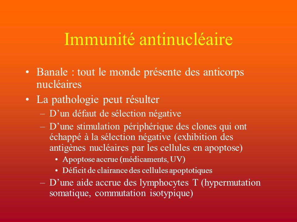 Immunité antinucléaire