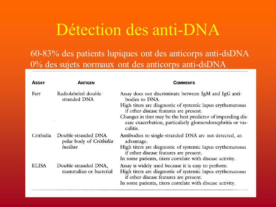 Détection des anti-DNA