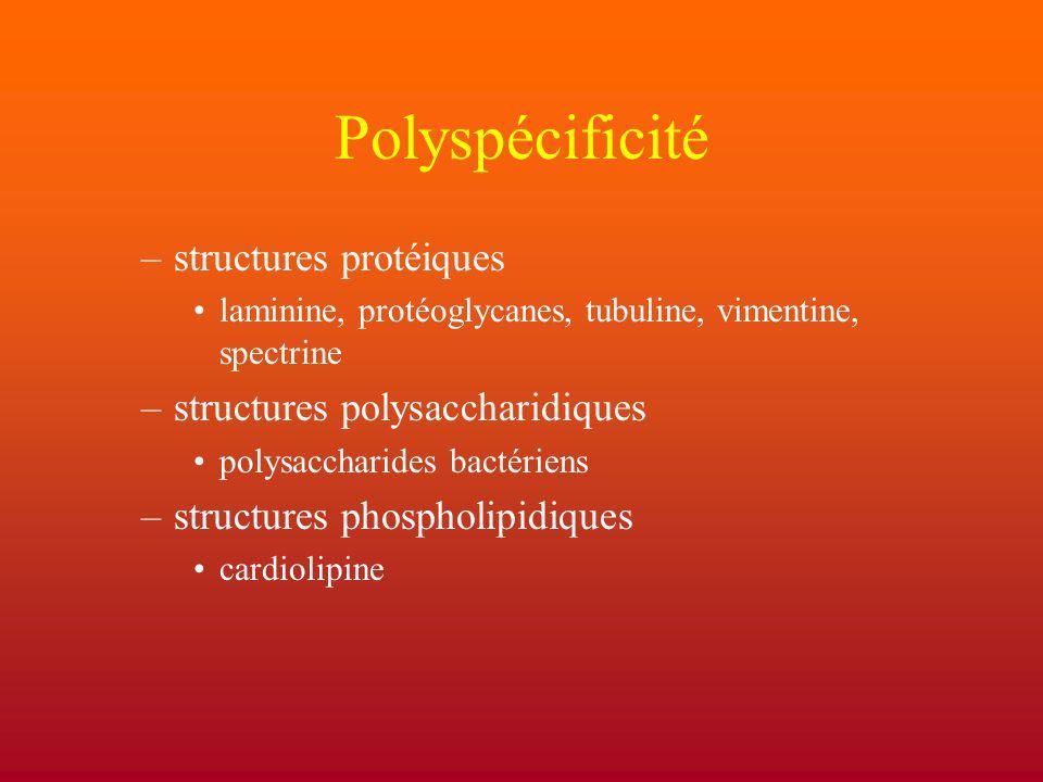 Polyspécificité structures protéiques structures polysaccharidiques