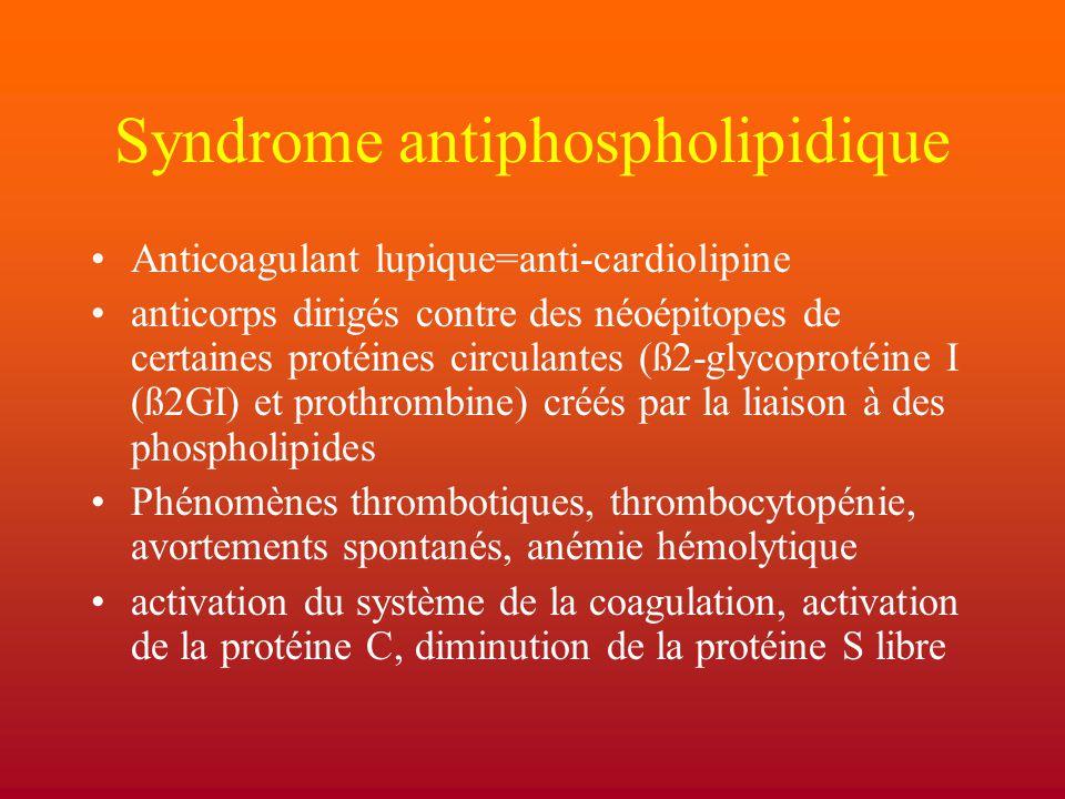Syndrome antiphospholipidique