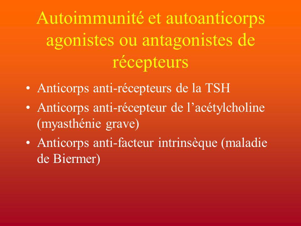 Autoimmunité et autoanticorps agonistes ou antagonistes de récepteurs