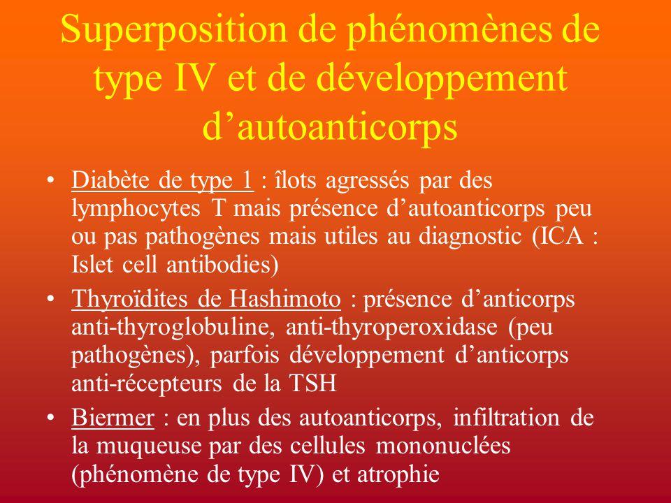 Superposition de phénomènes de type IV et de développement d'autoanticorps