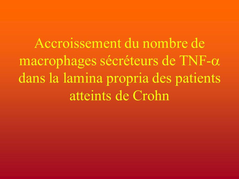 Accroissement du nombre de macrophages sécréteurs de TNF-a dans la lamina propria des patients atteints de Crohn