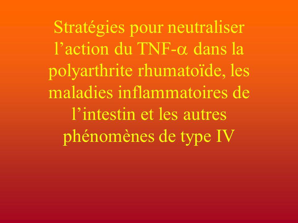 Stratégies pour neutraliser l'action du TNF-a dans la polyarthrite rhumatoïde, les maladies inflammatoires de l'intestin et les autres phénomènes de type IV