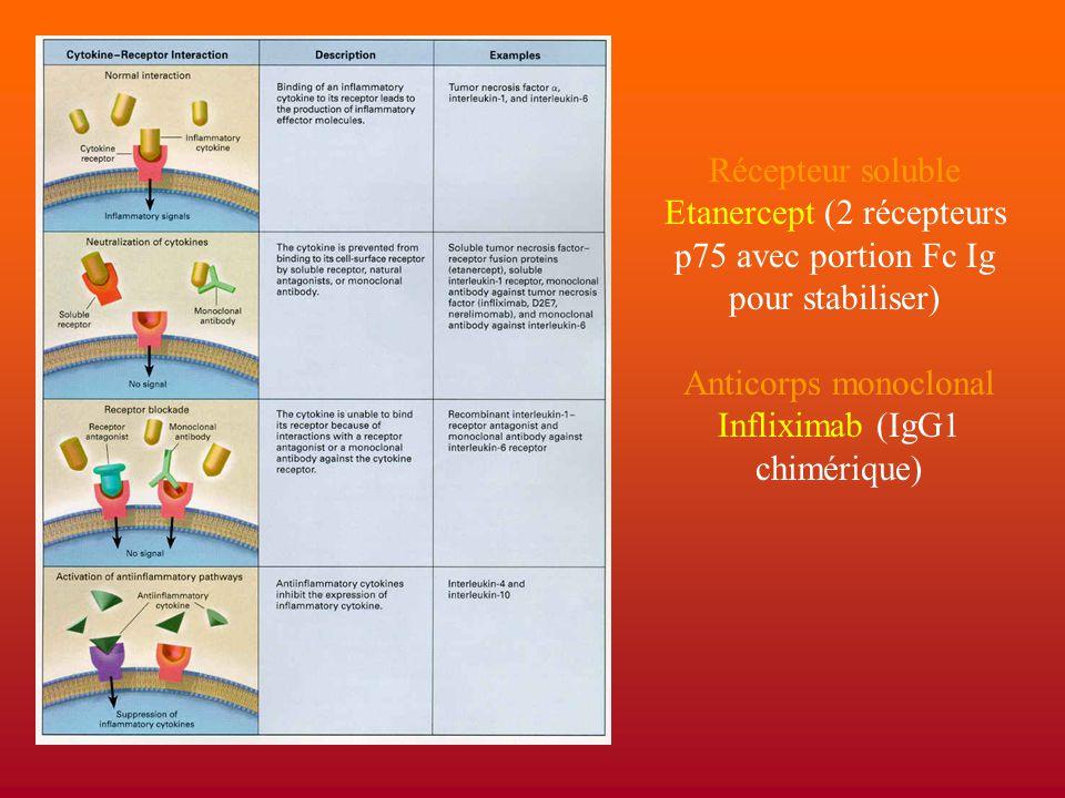 Etanercept (2 récepteurs p75 avec portion Fc Ig pour stabiliser)