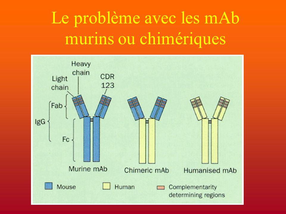 Le problème avec les mAb murins ou chimériques