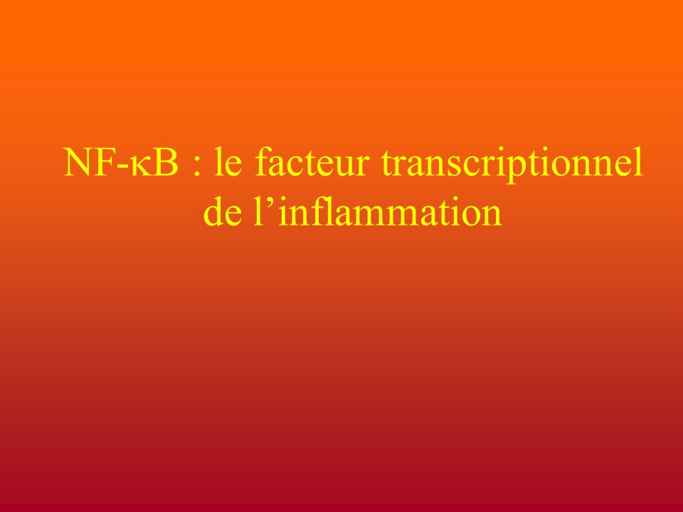 NF-kB : le facteur transcriptionnel de l'inflammation