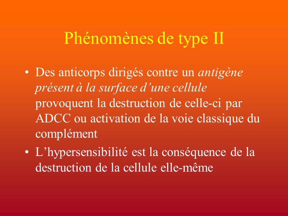 Phénomènes de type II
