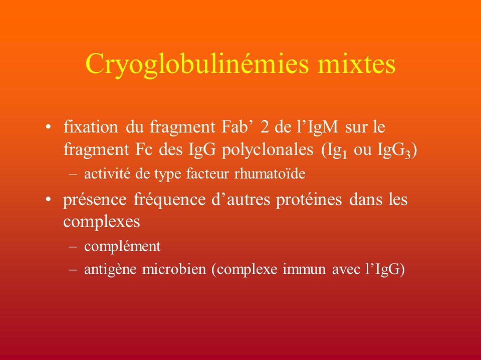 Cryoglobulinémies mixtes
