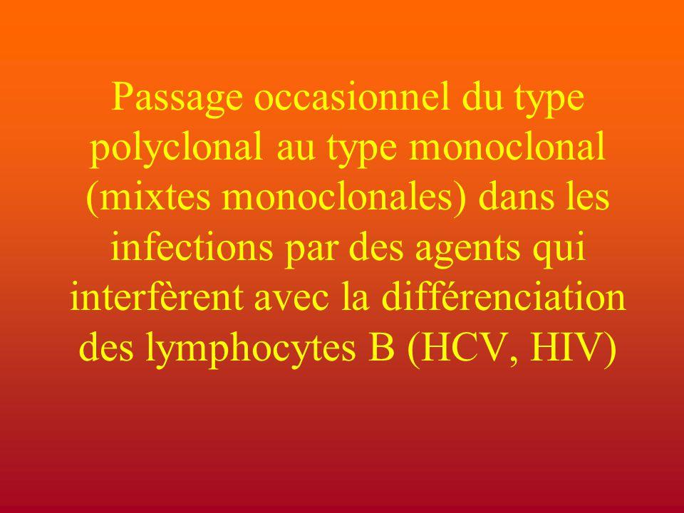 Passage occasionnel du type polyclonal au type monoclonal (mixtes monoclonales) dans les infections par des agents qui interfèrent avec la différenciation des lymphocytes B (HCV, HIV)