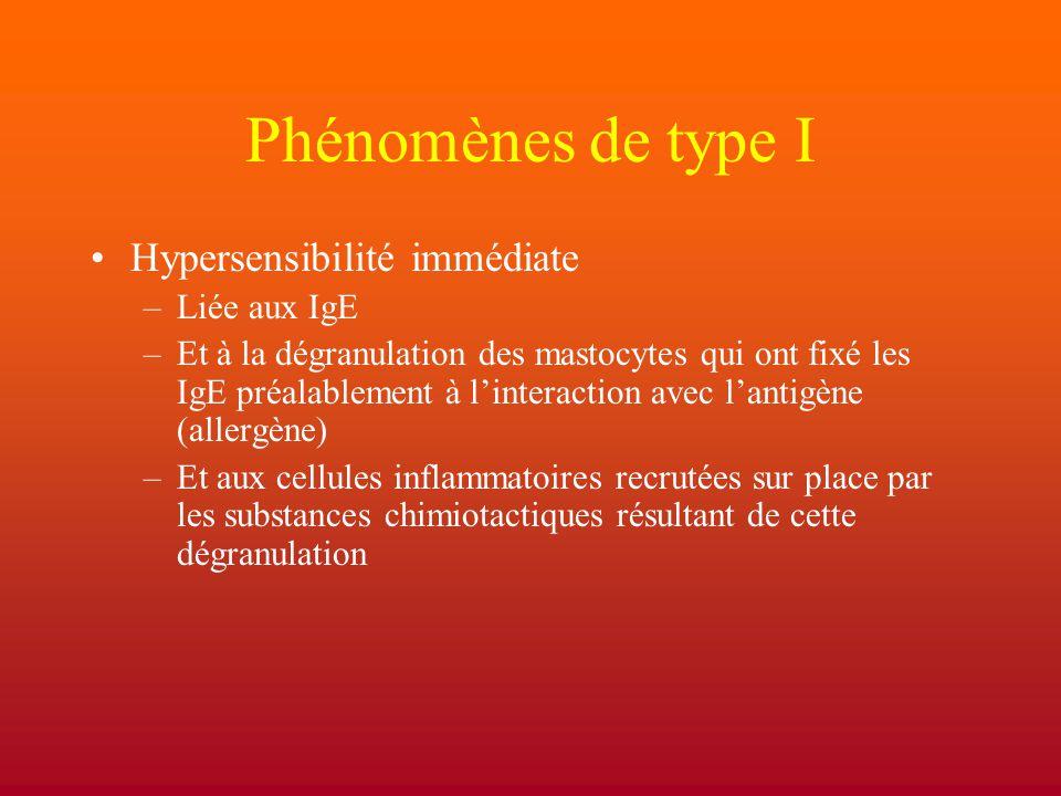Phénomènes de type I Hypersensibilité immédiate Liée aux IgE
