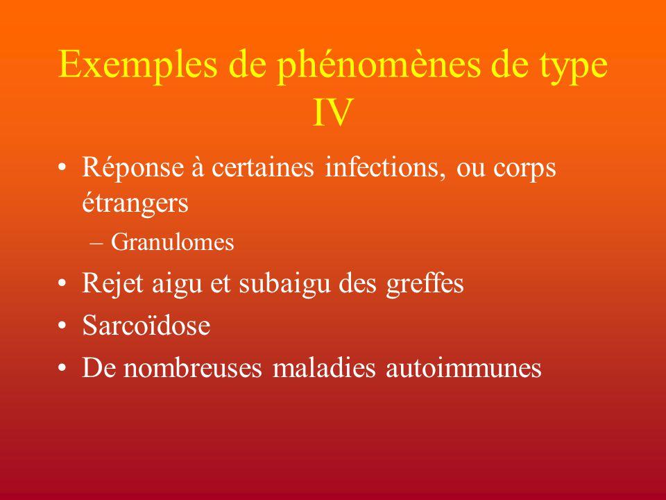 Exemples de phénomènes de type IV