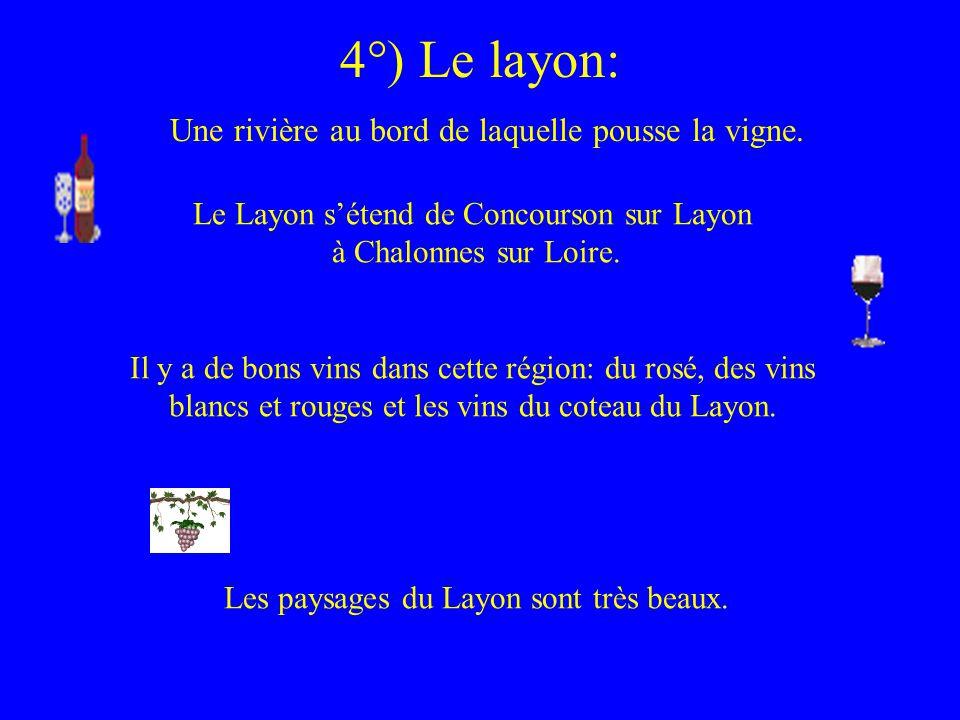 4°) Le layon: Une rivière au bord de laquelle pousse la vigne.