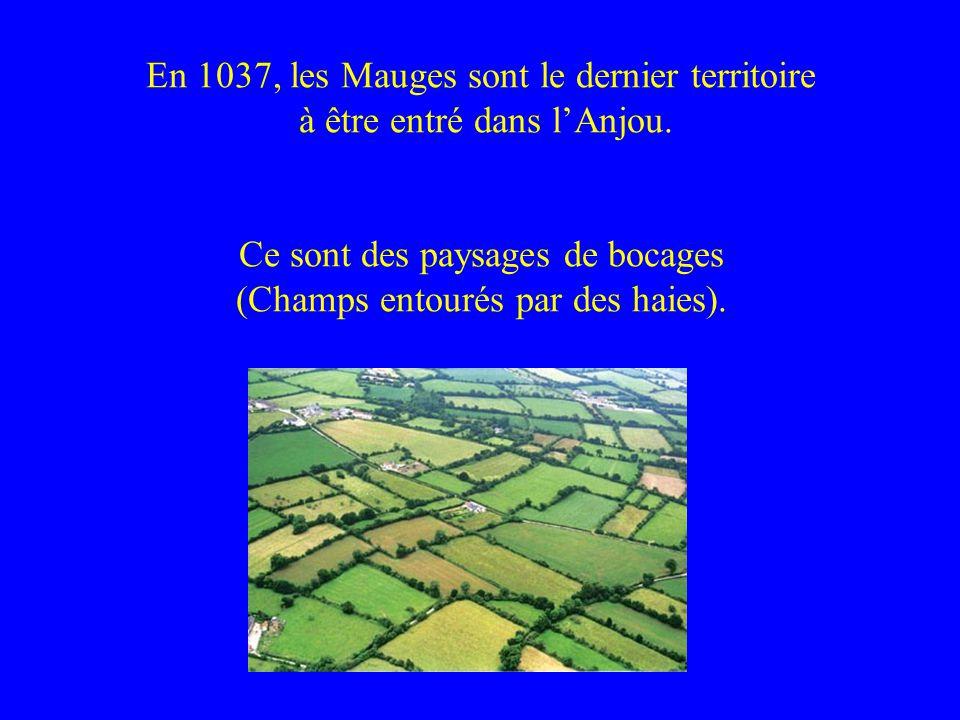 En 1037, les Mauges sont le dernier territoire