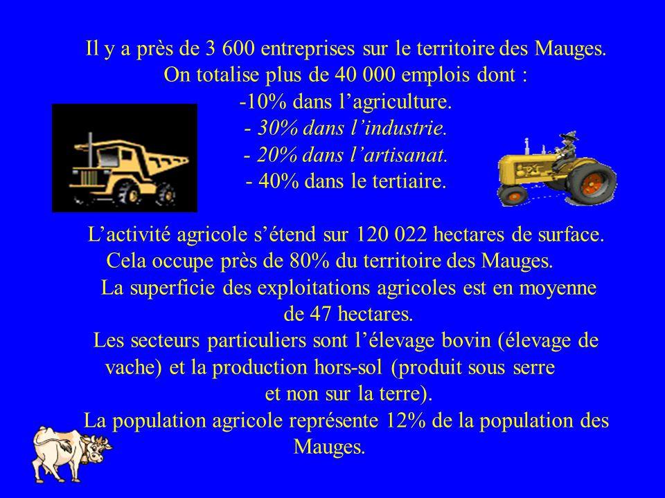 Il y a près de 3 600 entreprises sur le territoire des Mauges.