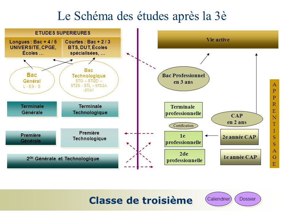 Le sch ma des tudes apr s la 3 ppt video online for Etude de cuisine apres le bac