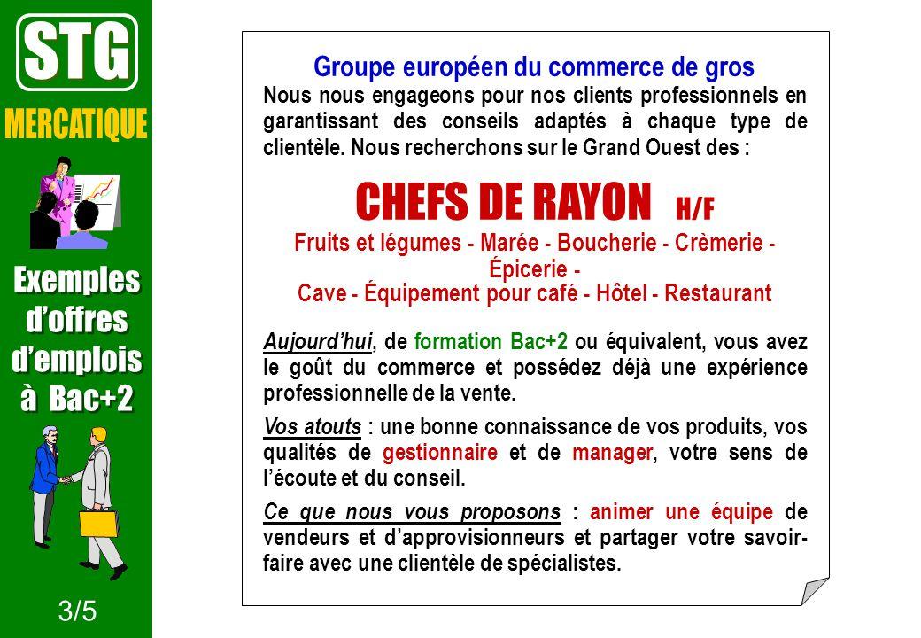STG CHEFS DE RAYON H/F MERCATIQUE Exemples d'offres d'emplois à Bac+2