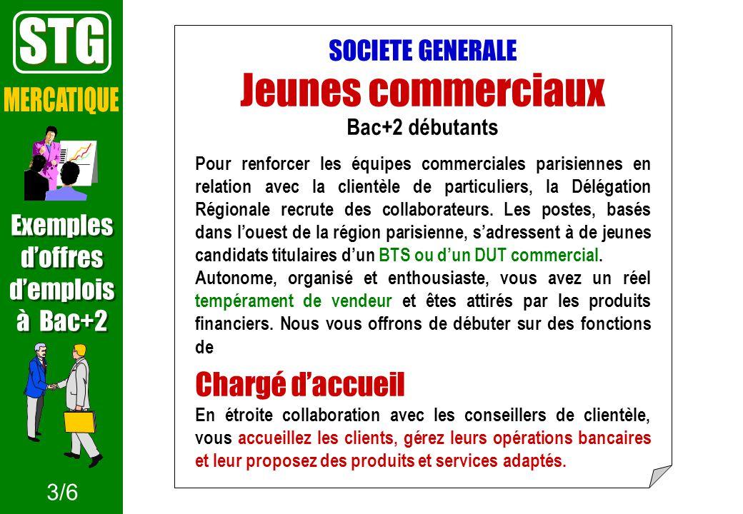 STG Jeunes commerciaux MERCATIQUE Chargé d'accueil SOCIETE GENERALE