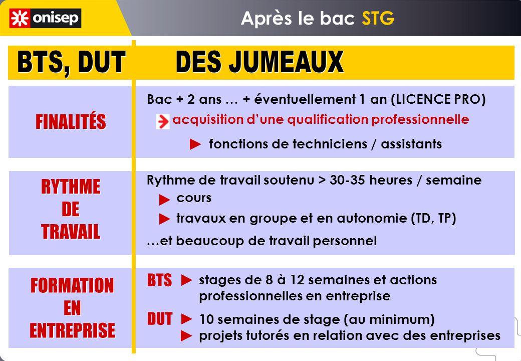 BTS, DUT DES JUMEAUX Après le bac STG FINALITÉS RYTHME DE TRAVAIL