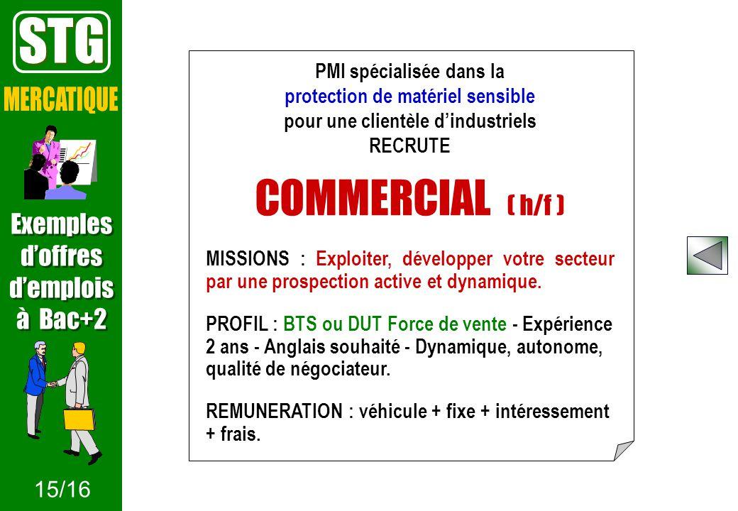 STG COMMERCIAL ( h/f ) MERCATIQUE Exemples d'offres d'emplois à Bac+2