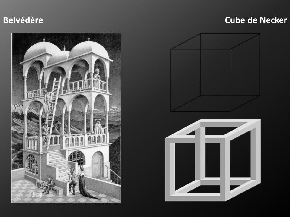 Belvédère Cube de Necker