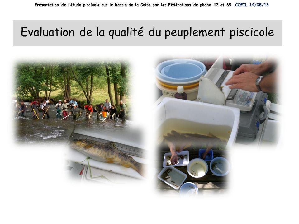 Evaluation de la qualité du peuplement piscicole
