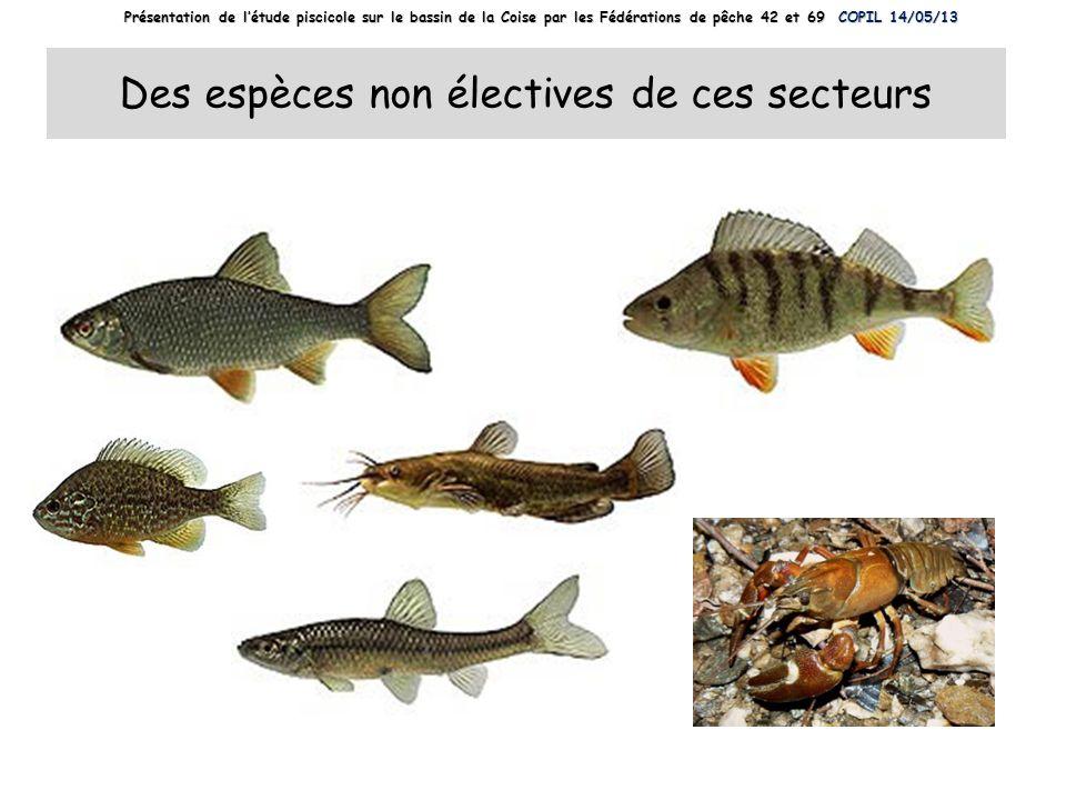 Des espèces non électives de ces secteurs